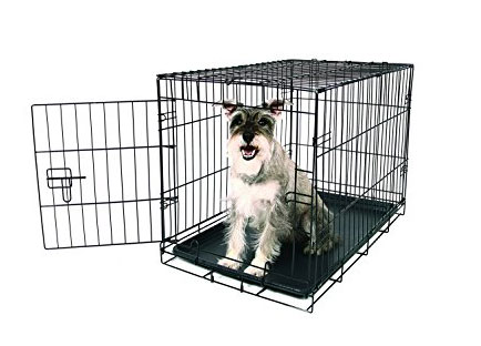 Best dog crate reviews - carlson compact single door metal dog crate