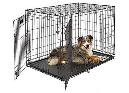 Best dog crate reviews - Midwest icrate double door 42