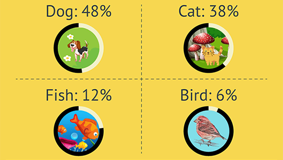 Which Pet is Right for You