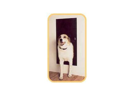 Best Smart Pet doors - Solo Pet Doors Automatic pet Door
