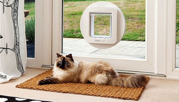 Smart Pet Door Reviews Best Electronic Dog Door In 2018