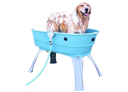Plastic dog tub