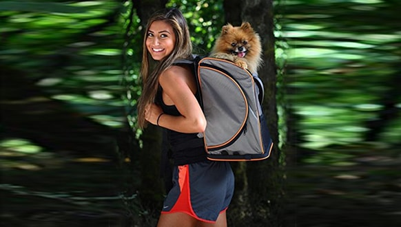Best Dog Carriers for Hikers